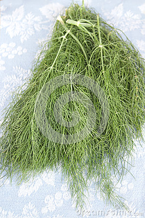 Sprigs of Fennel