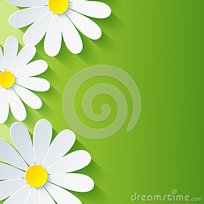 Spring abstract floral background, 3d flower chamo Vector Illustration