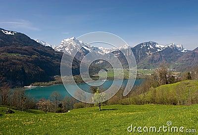 Spring in Alps