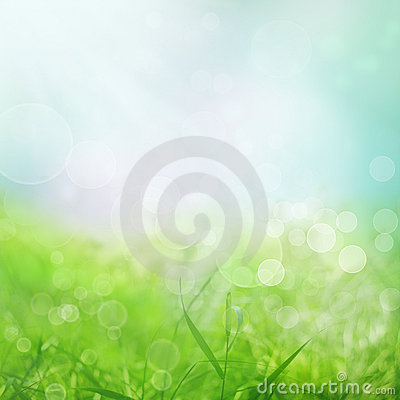 Free Spring Background Royalty Free Stock Image - 18883096