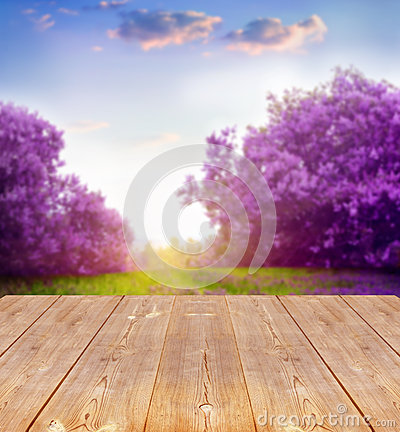Free Spring Background Royalty Free Stock Photos - 37616548