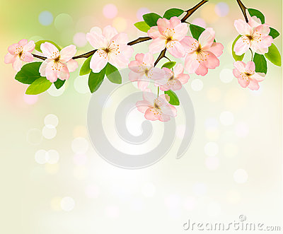 Spring background with blossoming tree