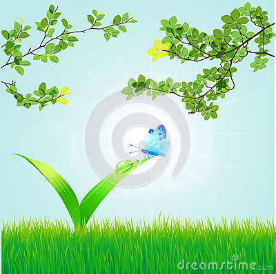 Spring background with a grass, leaves, dew