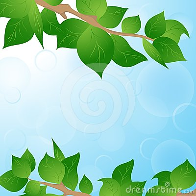 Spring background with green leaves