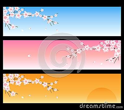 Spring banners - sakura