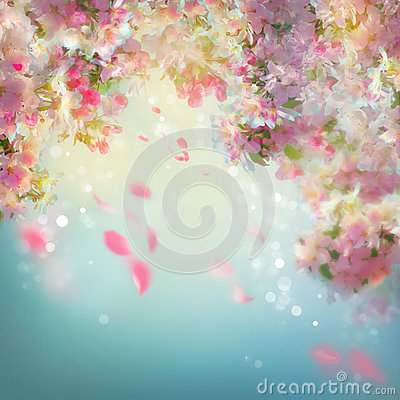 Free Spring Cherry Blossom Background Royalty Free Stock Photo - 53220835