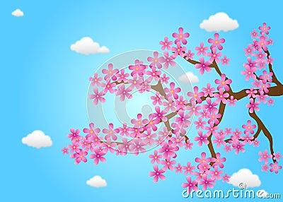 Spring Cherry Flowers Vector