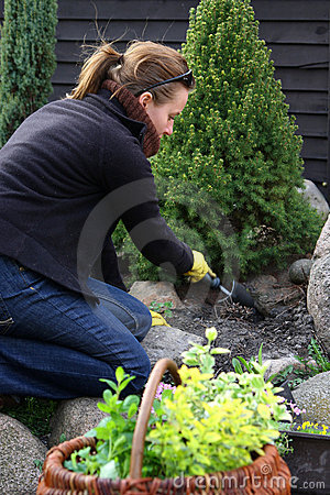 Spring cleaning dans le jardin