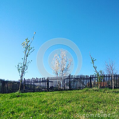Spring countryside landscape - peaceful blue sky Stock Photo