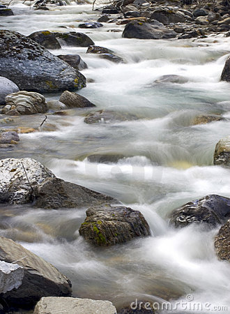 Spring Creek 2
