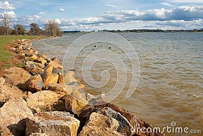 Spring Day on Rutland Water Shoreline