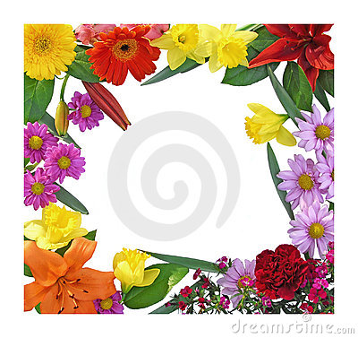Free Spring Flower Border Royalty Free Stock Photo - 8181675