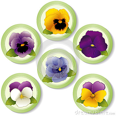 Spring Flower Buttons, Pansies