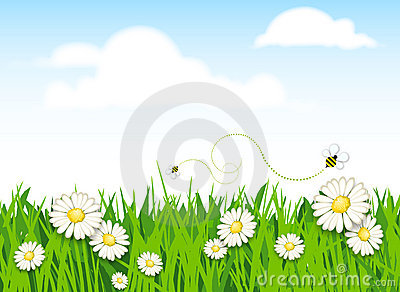 Spring flower and grass background