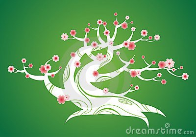 Spring Flowering Tree With Curved Trunk Royalty Free Stock Image - Image: 13474726