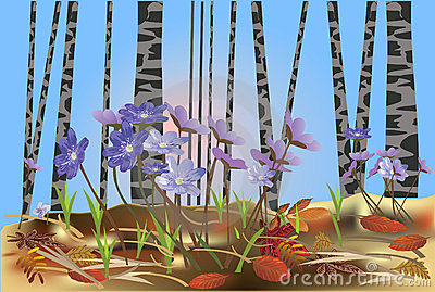 Spring flowers in birch forest illustration