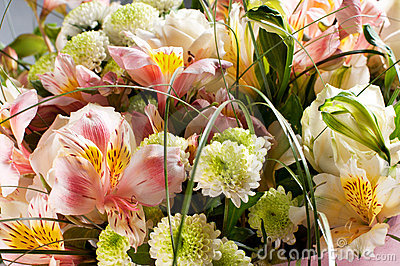 Spring Flowers Bouquet Royalty Free Stock Photo - Image: 19918185