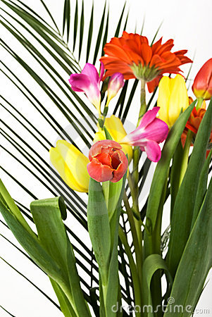 Free Spring Flowers Bouquet Stock Image - 8555171