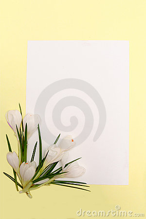 Free Spring Flowers Frame Royalty Free Stock Image - 1937276