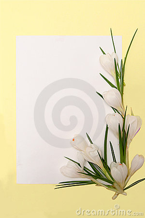 Free Spring Flowers Frame Stock Photography - 1937292