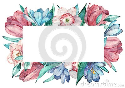 Spring flowers frame in watercolor style with white background. Hyacinth, tulip, narcissus. Cartoon Illustration