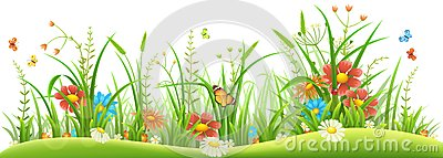 Spring flowers and grass Vector Illustration