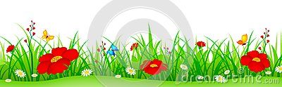 Spring flowers and grass header Vector Illustration