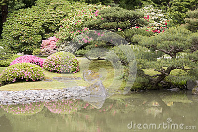 Spring flowers in Japanese garden