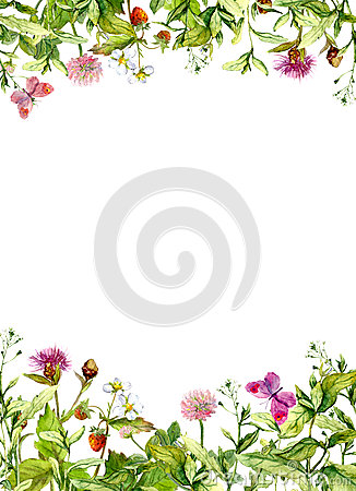 Free Spring Flowers, Meadow Grass, Butterflies. Floral Border. Watercolor Card, Blank Royalty Free Stock Photography - 75791167
