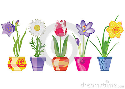 Spring Flowers In Pots, Vector Ill