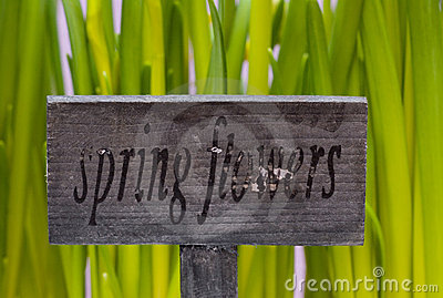 Spring flowers sign