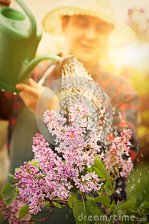 Free Spring Garden Concept Royalty Free Stock Photos - 29578088
