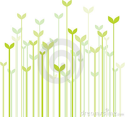 Free Spring Grass Stock Photos - 8213133