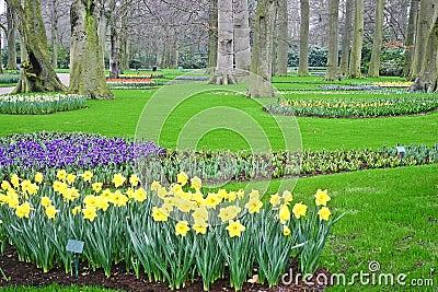 Spring and Green Garden