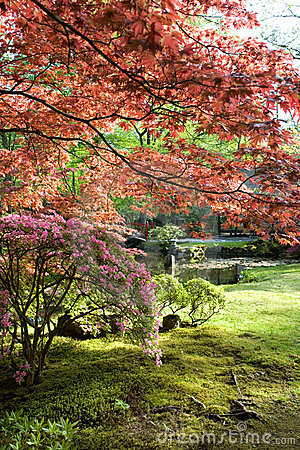 Free Spring In Park Royalty Free Stock Photography - 5179837