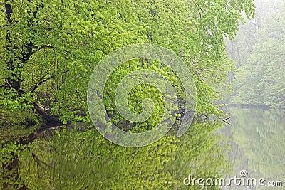 Spring, Kalamazoo River