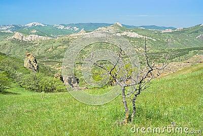 Spring in Karadag nature reserve