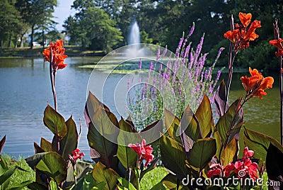 Spring Lake Garden
