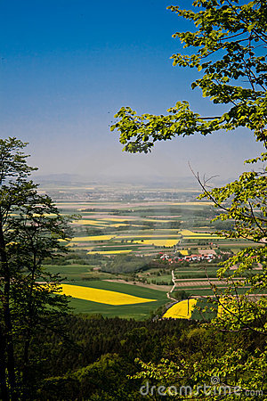 Spring landscape, fields