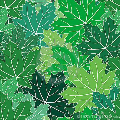 Spring maple green leaves seamless vector texture