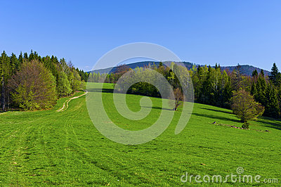 Spring In The Mountains Stock Image - Image: 25092521