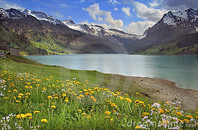 Spring mountains lake