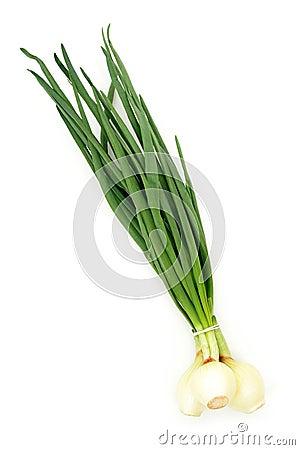 Free Spring Onions Royalty Free Stock Photos - 759278