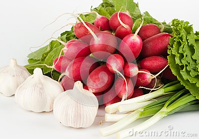 Spring onions, garlic, lettuce and radish