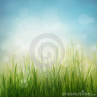 Free Spring Or Summer Abstract Season Nature Background Royalty Free Stock Photos - 23362108