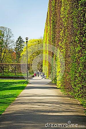 Spring in the Park Oliwski, Gdansk Editorial Stock Image