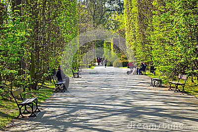 Spring in the Park Oliwski, Gdansk Editorial Image