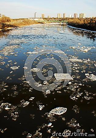 Spring river in edmonton