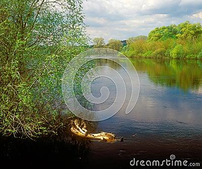 Spring river landscape.