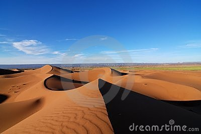 Spring in the Sahara